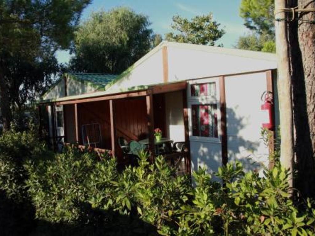 Camping Free Time Marina di Bibbona